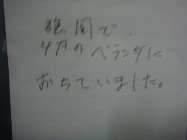 DSC03692-1.JPG